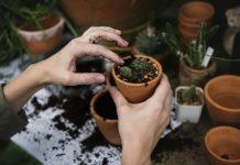 5 gadżetów, które ułatwią pracę w domu i ogrodzie