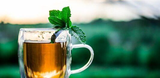 herbata wzmacniająca odporność